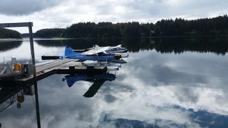 DeHavilland DHC-2 Beaver - My ride for the day