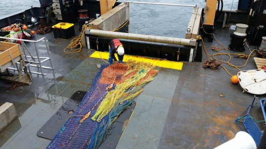 The trawl net being set out on deck.