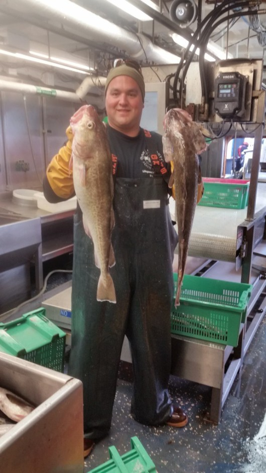 These Pacific Cod were 8 pounds each.