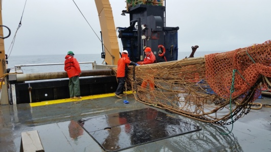 The deck crew and fisherman deploying an Aleutian Wing Trawl