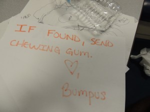 b3i - Bumpus