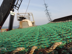 Close up of the dredge material
