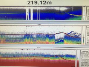 Sonar profile of one of our sites for an acoustic release receiver.