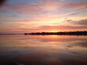 Another Picture of Indian River Bay