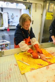 Fileting Rockfish