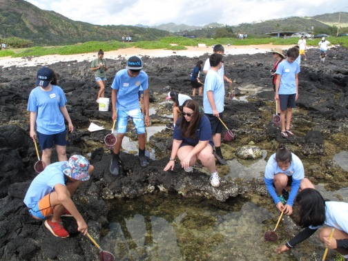 Conducting a coastal study with students in Hawai'i Kai