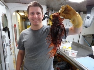 One of the larger lionfish (Pterios spp.) caught on Day 13