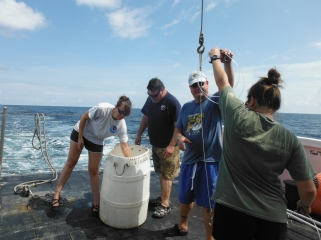 Kristin Hannan ( left) and science volunteers preparing gangions. These will be baited and attached to the main line.