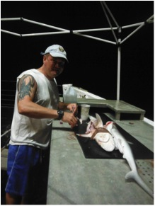 Dr. Ian Davenport dissecting a female Sharpnose shark.