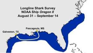 Longline Shark Survey Map