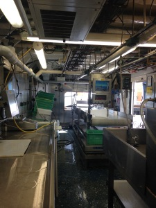 The ship's wet lab