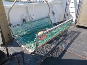 Shark cradle