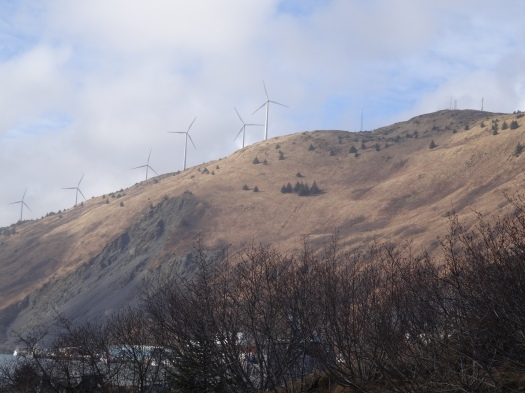Wind Powered Turbines