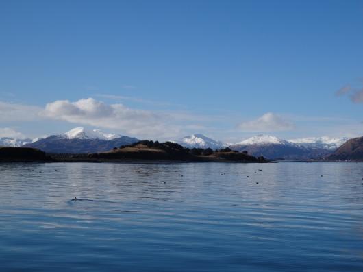 Beautiful Mountains from the Harbor in Kodiak, Alaska