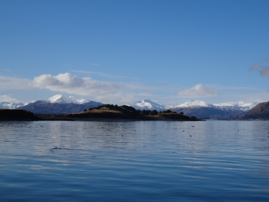 Beautiful Mountains from the Harbor in Kodiak, Alaska