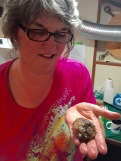 Mary holds a nudibranch