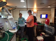 Mary working in the wet lab with Cheryl and Kasey