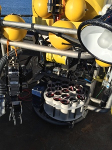 Sample Quivers on ROV