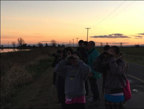 TAS Dana Chu watching sandhill cranes