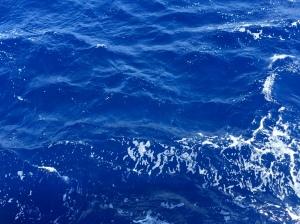 Sea colors