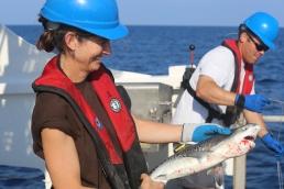 Then, I release it. Photo: Matt Ellis/NOAA Fisheries