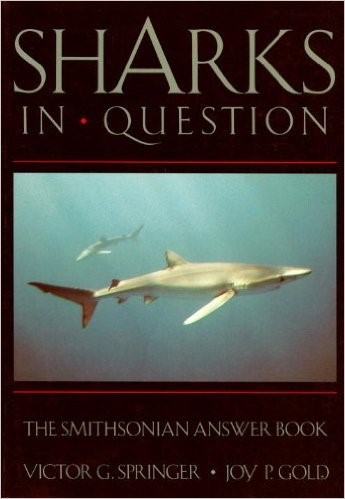 sharks-in-question