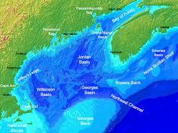 Gulf of Maine Pic