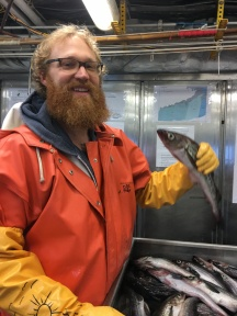 Pollock is a staple part of Alaska's economy.