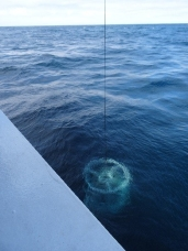 CTD surfaces after test