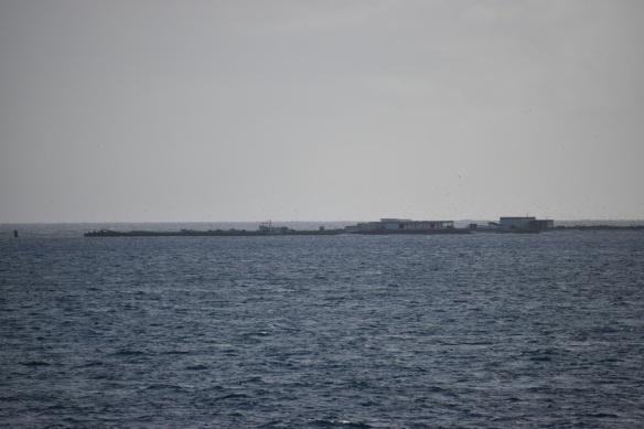 Sdeschryver2017 Noaa Teacher At Sea Blog