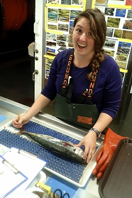 Nina measures jack mackerel (Photo Credit: Austin Grodt)