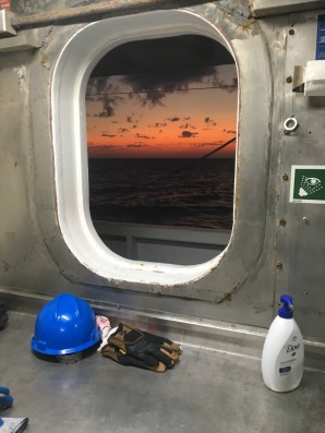 View from the wet lab