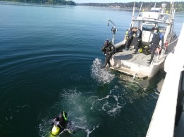 Divers Preparing to Remove Biofouling from Ship's Hull and Sonar Equipment