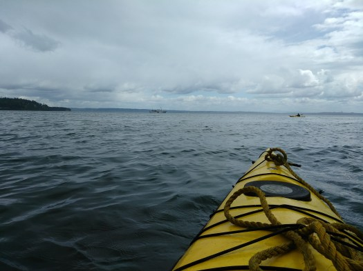Wide Open Waters of Puget Sound