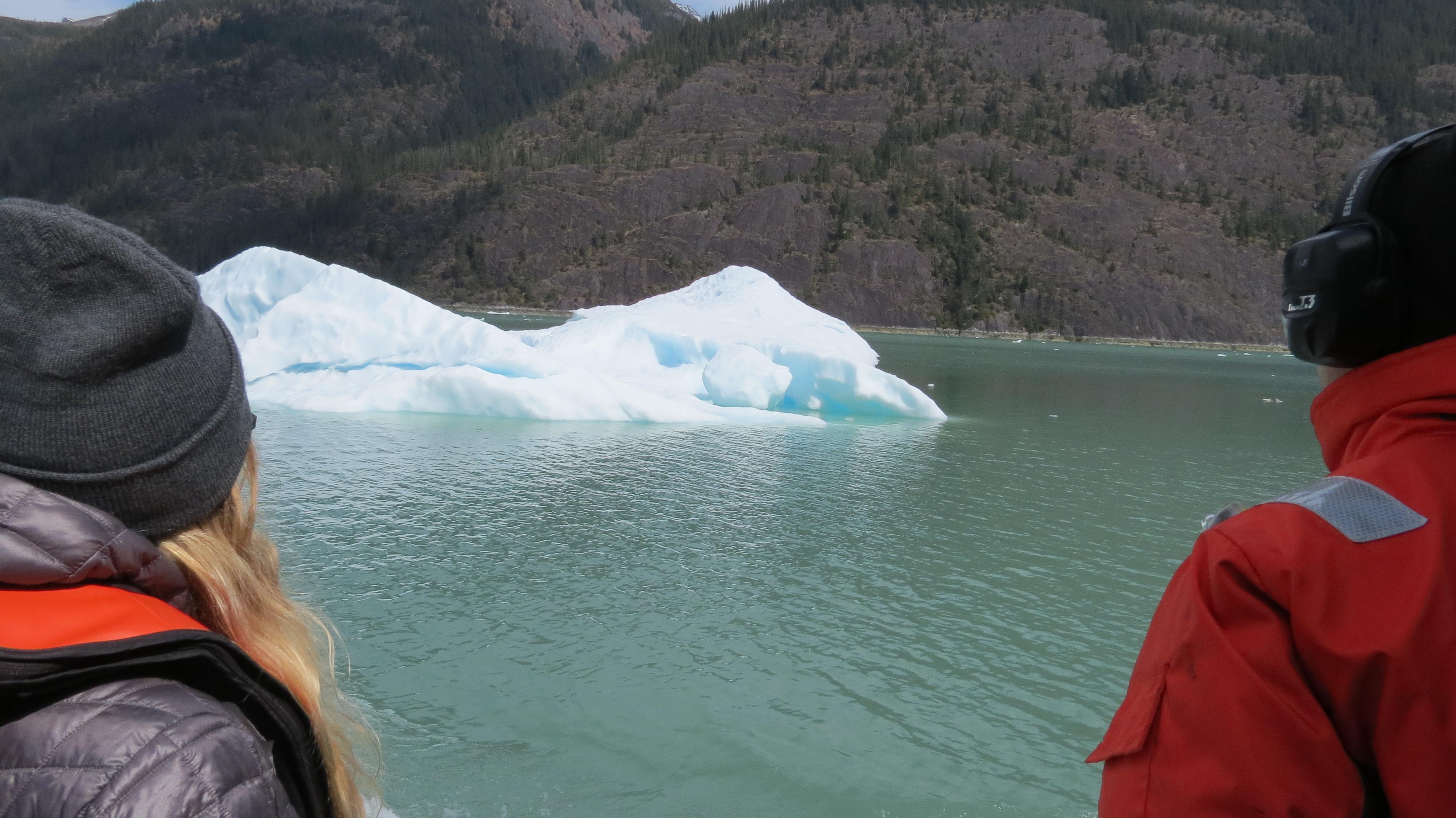 ice on Endicott Arm