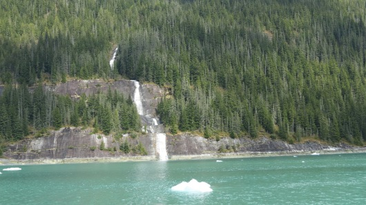 waterfall in Endicott Arm