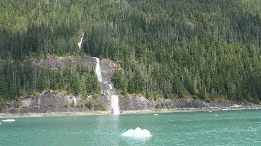 waterfall in Endicott Arm