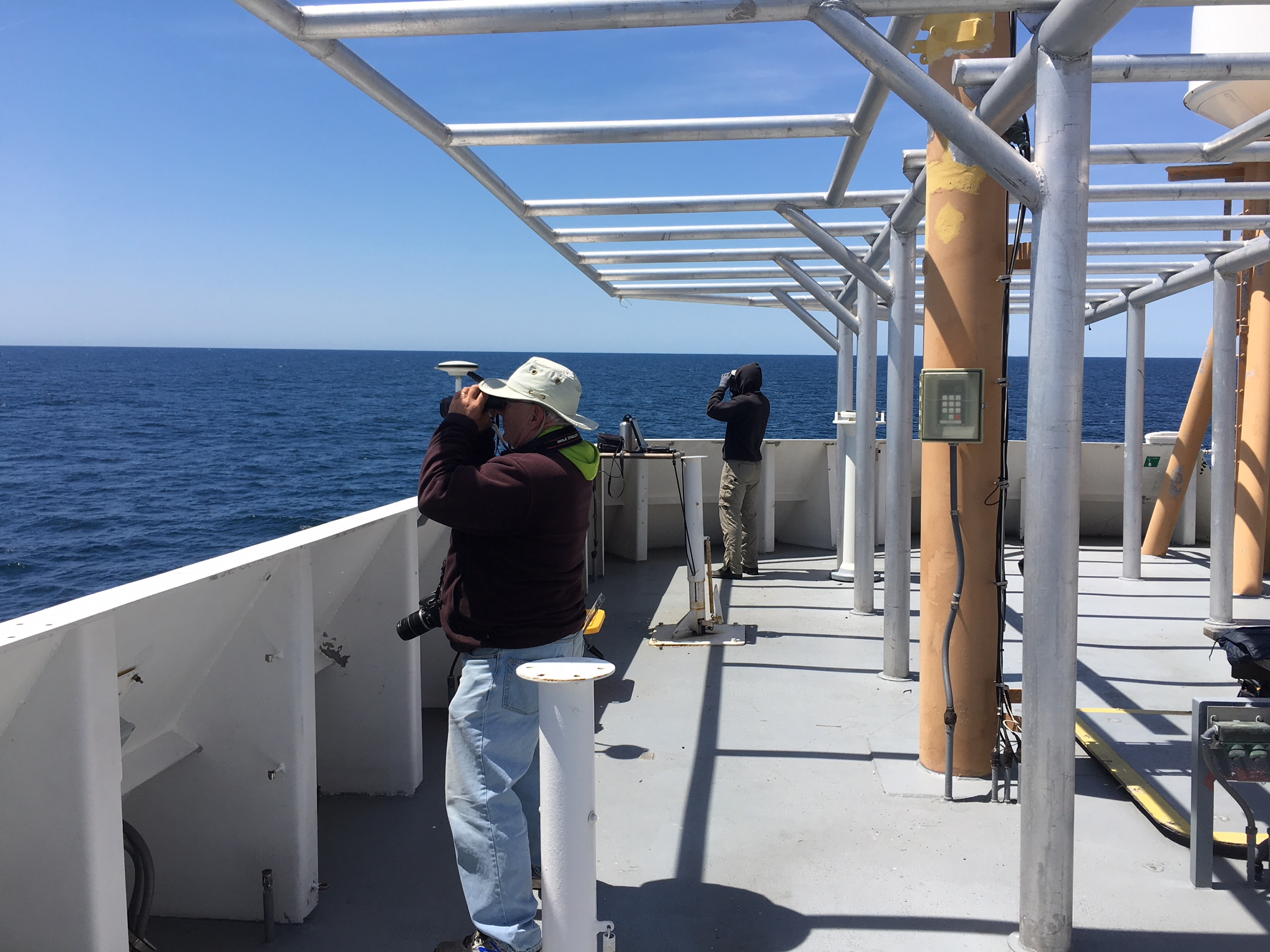 birders on deck