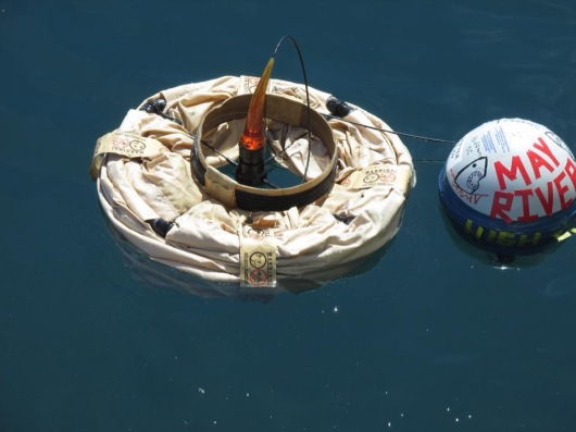 buoy floating
