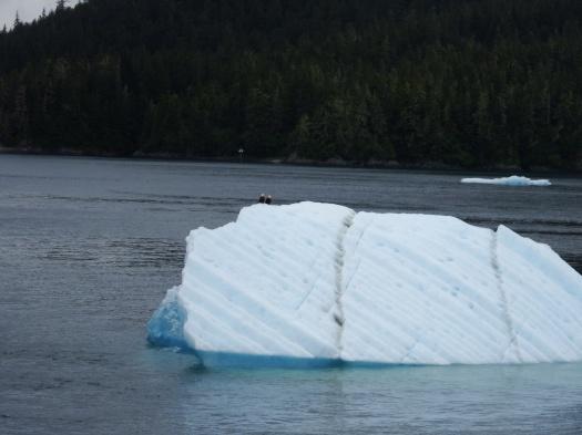 Eagles on Iceberg