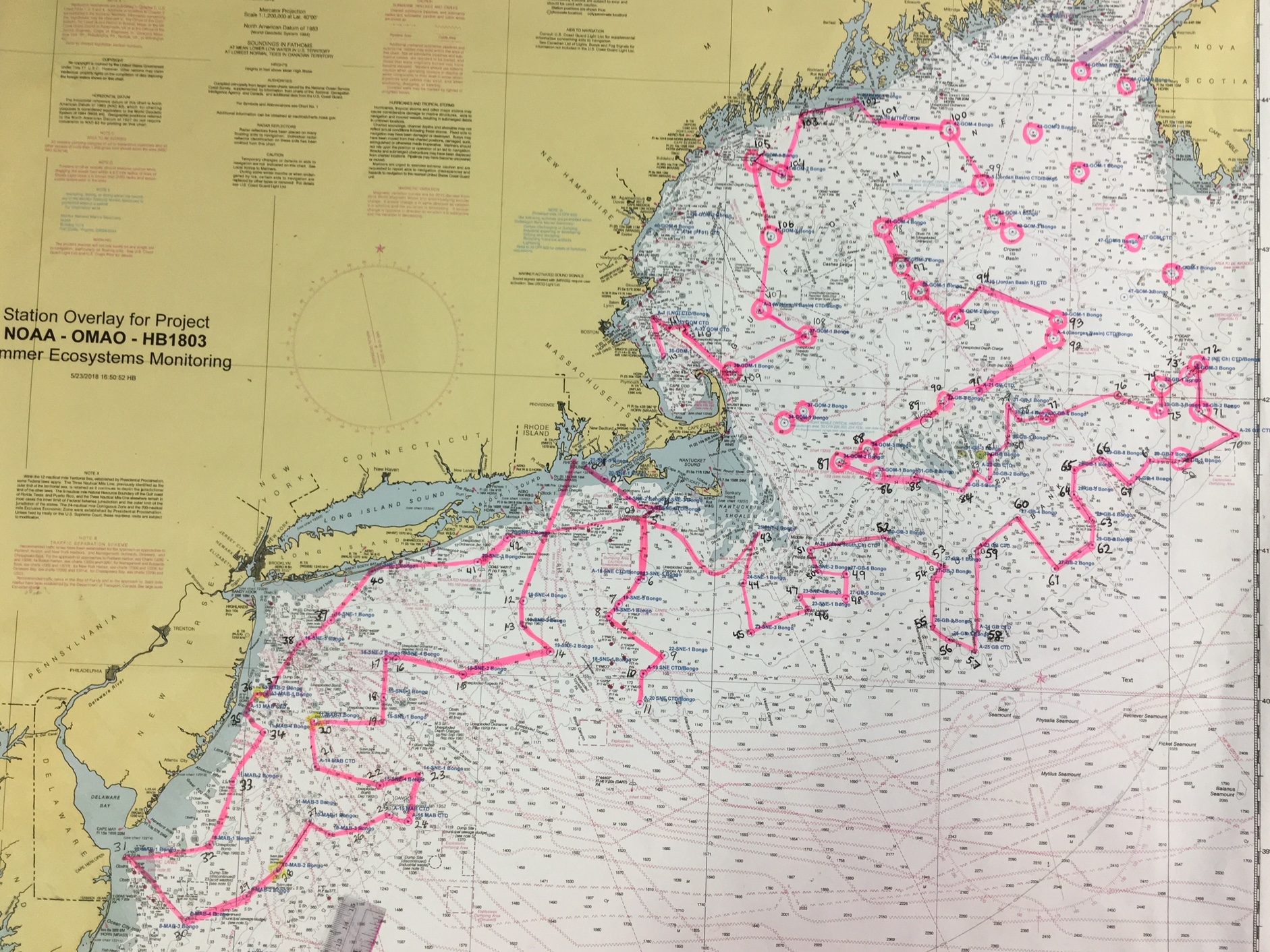 Route map shows path of cruise