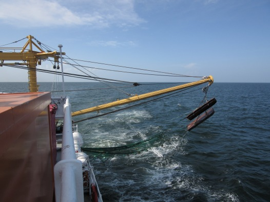 Trawl nets being deployed.