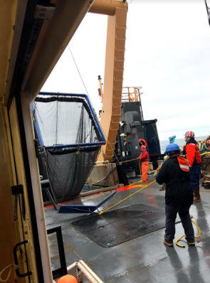 Methot net being brought on deck