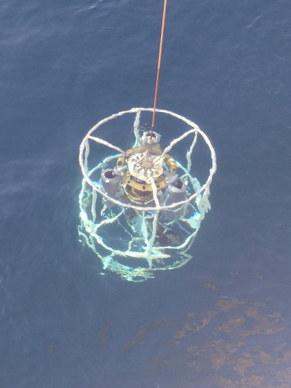 CTD in the water