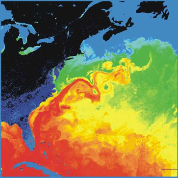 The Gulf Stream is visible in red as it carries warm water from the south into the northern Atlantic. Photo from: https://en.wikipedia.org/wiki/Gulf_Stream#/media/File:Golfstrom.jpg