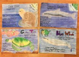Endangered Animal Awareness Posters