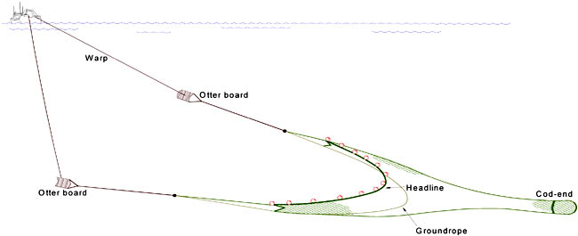 Diagram of an otter trawl net