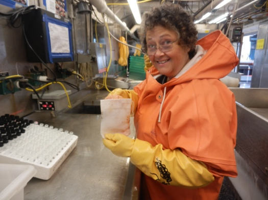 Sandi Neidetcher, a research fishery biologist at the NOAA's Alaska Fishery Wildlife Center