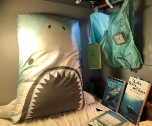 My own shark cradle