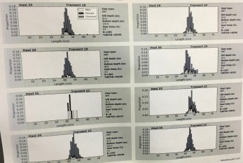 Length distributions from several hauls